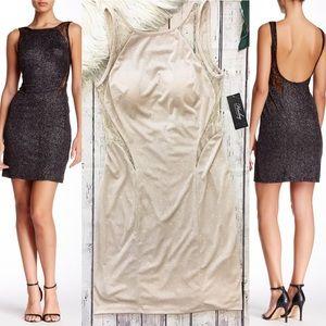 NWT Hailey Adrianna Papell Dress Size 8